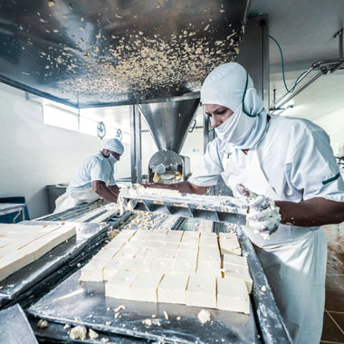 Person in full PPE working in a cheese factory slicing feta